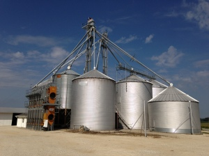 This is our grain conditioning and storage facility. The grain dryer on the left side of the picture was new in summer 2012. It has the capacity to keep up with our 2 12-row combines.