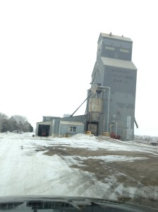 Here is a typical skyscraper of the prairie.  This one is in Wheatland, North Dakota.  The town's name sparked our interest for obvious reasons.