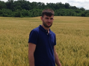 Nicolas, our French visitor, examines the wheat and helps us estimate the harvest date.