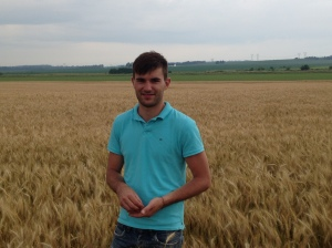 Nicolas discovered that the wheat was closer to ripe than we expected.  He thinks 2 days of sun will make it 'ready'.