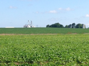 The DCB in the foreground are at the two hills location.  In the distance, you can see our grain facility.