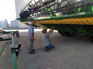 Brandon and John remove the lock-out bolts from the cutterbar.  This will allow the cutterbar to flex in the soybean field.  It was 'locked up' for operation in wheat back in June.
