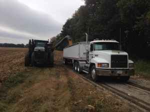 Typical for this week of corn harvesting:  Tractor and grain cart in the soft field, truck on the blacktop.  We're fortunate with this location; the paved road is the field entrance.  in other locations, the trucks have had to be parked as much as 1/2  mile from where the combines were running.