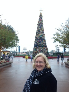 No, it's not a big green hat... it's the big Christmas tree at Epcot.  And notice our heavy sweatshirts came in handy, too.