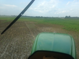 You can see in this 'look ahead' picture where the soybeans drowned in this slight depression in the field.  These 4 acres were killed by the inability of the water to timely escape after some of the heavy, heavy rain events.