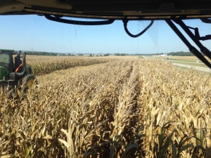 Beginning at the Steen farm, big field. This is what it looks like from the driver's seat in the JD S680