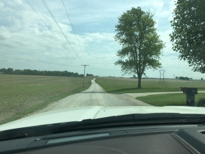The view as you drive out our lane. Pretty crop of soybeans...so far.
