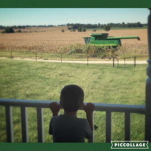 Cole watches his daddy. A future farmer here, I'm wagering.